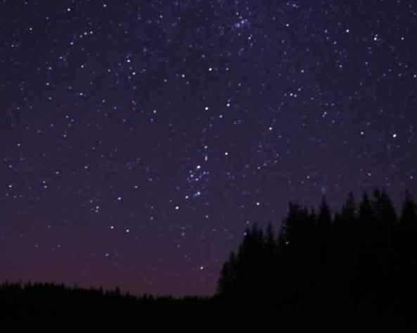 starr y starry night